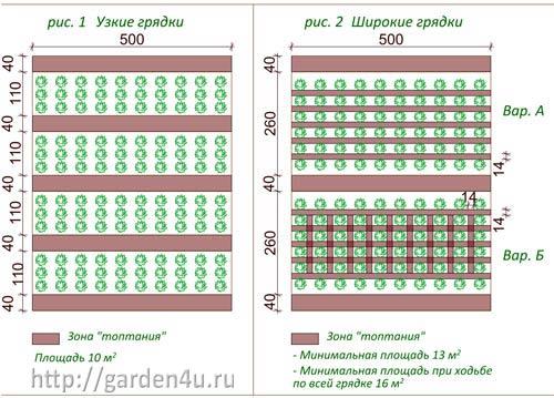 узкие грядки для овощей в эко-огороде
