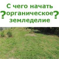 начало органического земледелия