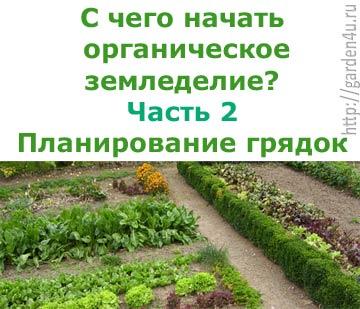 С чего начать органическое земледелие? Планируем грядки