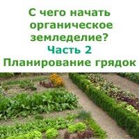 планируем грядки в органическом земледелии