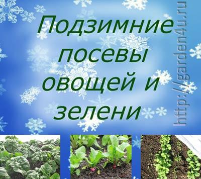 подзимний посев овощей и зелени