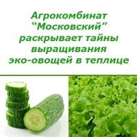 Эко-овощи с теплицы