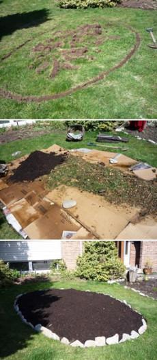 как бороться с пыреем  на огороде