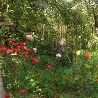Работа в саду весной и летом