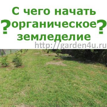 органическое земледелие. С чего начать?