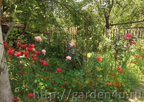 садовые работы весной и летом