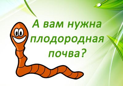 значение дождевых червей в природе